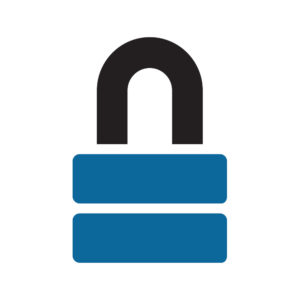 Data & System Security Icon